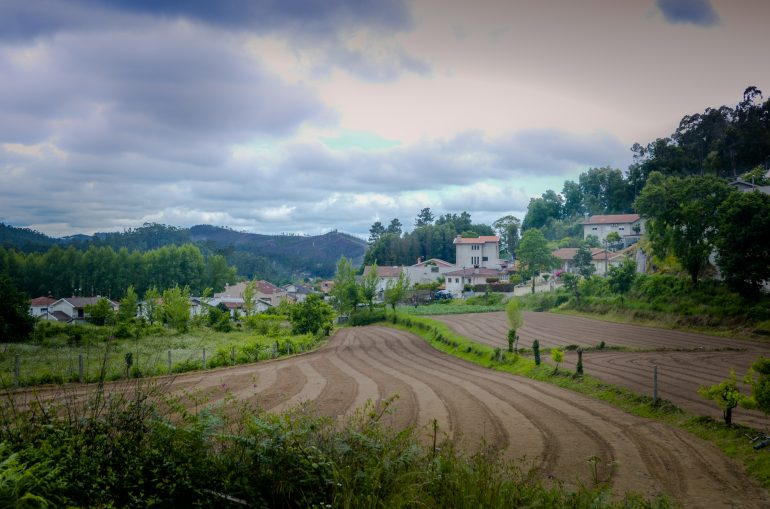 cultivated land (1 of 1)